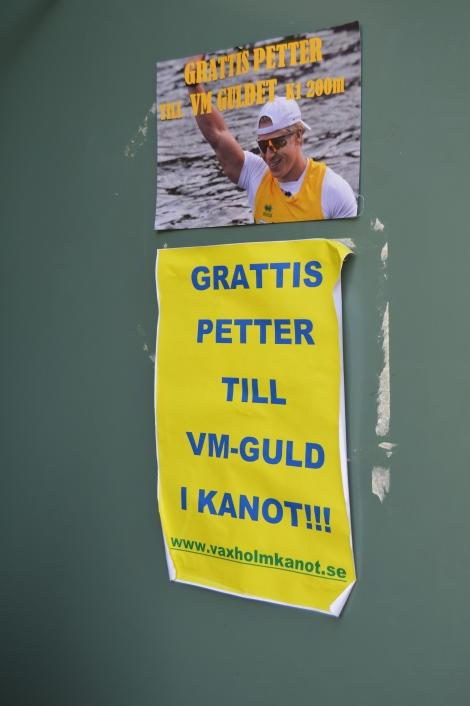 vm guld Petter Menning